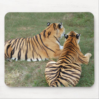 tiger-friends-b-4 tapetes de ratones