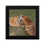 tiger-friends-b-5 caja de joyas