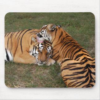 tiger-friends-b-5 alfombrillas de raton