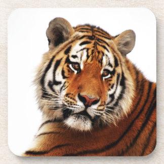 Tiger glance sideways photo beverage coaster