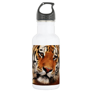 Tiger glance sideways photo stainless steel water bottle