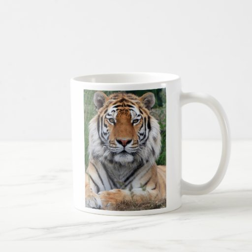 Tiger head beautiful photo coffee, tea mug
