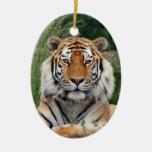Tiger head beautiful photo hanging ornament