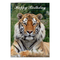 Tiger head beautiful photo happy birthday card