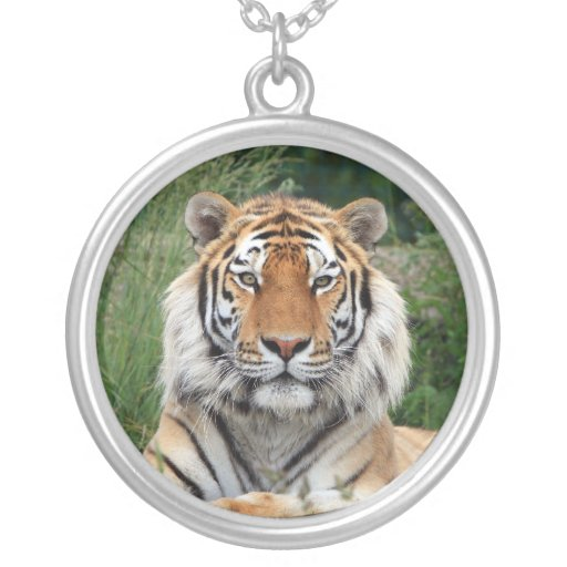 Tiger head beautiful photo pendant, necklace