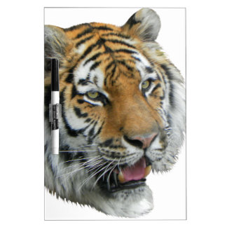 Tiger Head Clothing and Gifts Dry-Erase Whiteboards