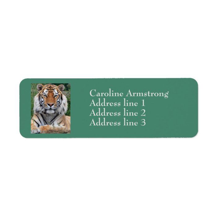 30 Custom Tiger in Winter Personalized Address Labels