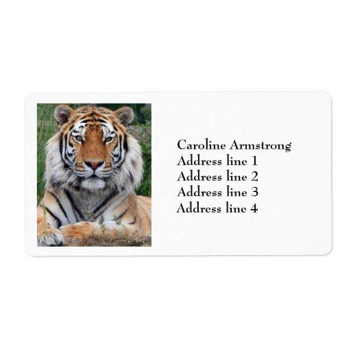Tiger head male beautiful custom address labels