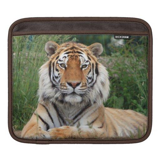 Tiger head male beautiful photo ipad sleeve