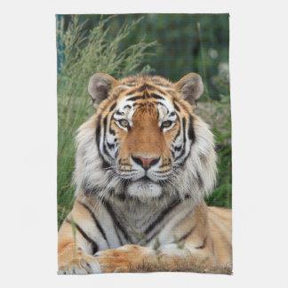 Tiger head male beautiful photo kitchen tea towel