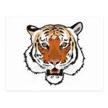 Tiger head postcard
