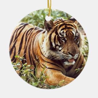 Tiger Holiday Ornament