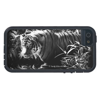 Tiger Hunting by Moonlight Phone Case iPhone 5 Case