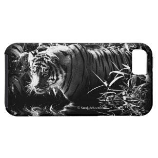 Tiger Hunting by Moonlight Phone Case iPhone 5 Cases