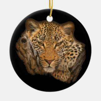 Tiger in a Tree Ornaments