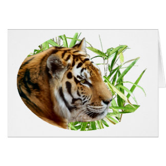 TIGER IN BAMBOO CARD