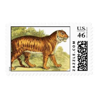 TIGER IN JUNGLE STAMPS