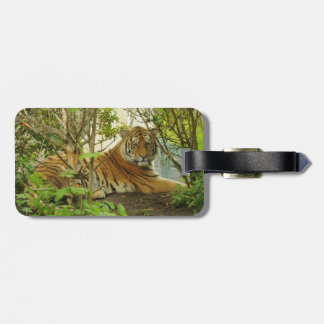 Tiger in The Forest Tags For Bags