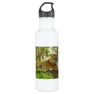 Tiger in The Forest Stainless Steel Water Bottle