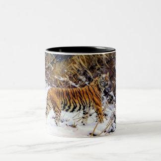 Tiger in the Snow Wild Cat Coffee Mug