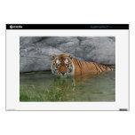 Tiger in Water Laptop Skin