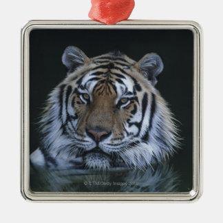 Tiger in Water Metal Ornament