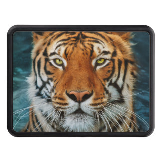 Tiger in Water Photograph Tow Hitch Cover
