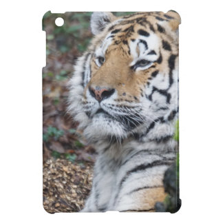 Tiger iPad Mini Cases