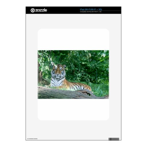 Tiger iPad Skin