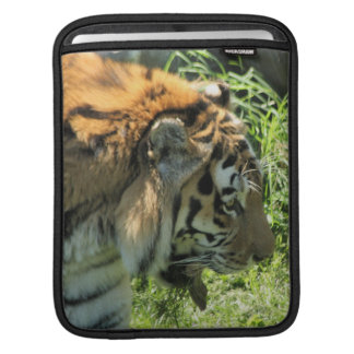 Tiger Sleeves For iPads