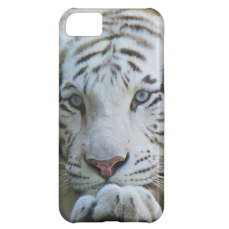 Tiger iphone case  cover for iPhone 5C