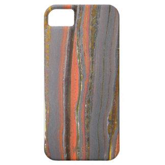 Tiger Iron I phone 5 case
