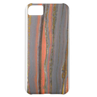 Tiger Iron I phone 5 case Cover For iPhone 5C