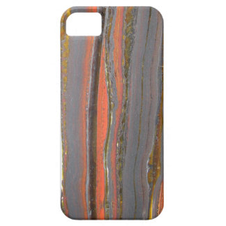 Tiger Iron I phone 5 case iPhone 5 Cases
