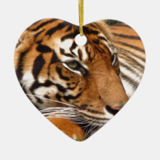 Tiger.jpg Ceramic Ornament