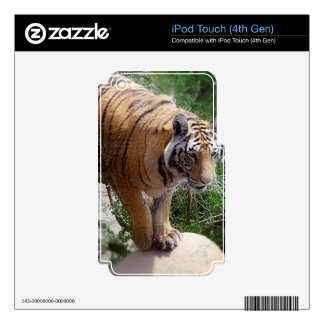 Tiger Jumping Decal For iPod Touch 4G