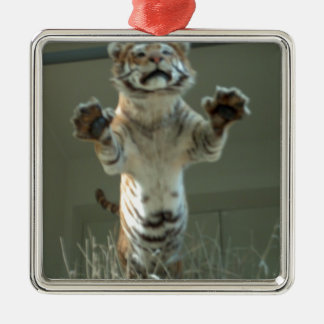 Tiger jumps at you Press Paws Christmas Tree Ornament