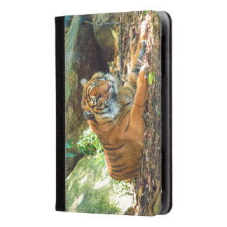 Tiger Kindle Fire Folio Case