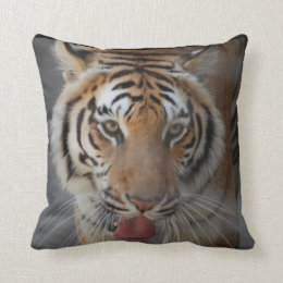 Tiger Kisses Pillow