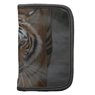 Tiger Kisses Wallet Folio Folio Planners
