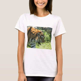 Tiger Ladie's T-shirt