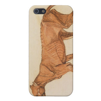 Tiger, Lateral View, Skin Removed, from 'A Compara Case For iPhone SE/5/5s
