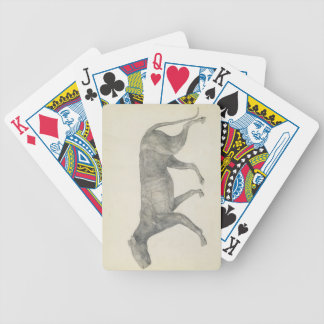 Tiger: Lateral View, with Skin and Tissue Removed, Bicycle Playing Cards