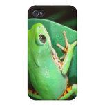 Tiger Leg Monkey Frog, Phyllomedusa iPhone 4/4S Cover