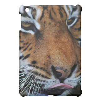 Tiger licking his lips case for the iPad mini