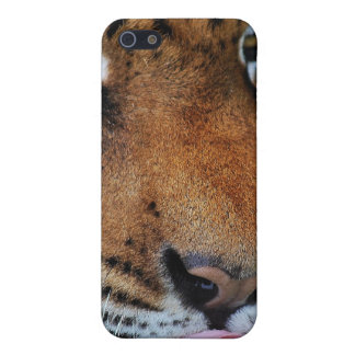Tiger licking his lips cover for iPhone SE/5/5s