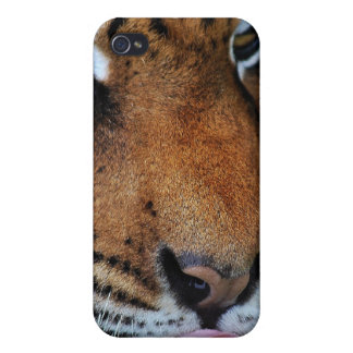 Tiger licking his lips iPhone 4 cover