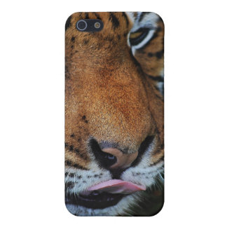 Tiger licking his lips iPhone SE/5/5s cover
