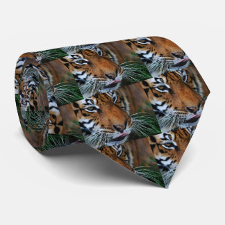Tiger licking his lips neck tie