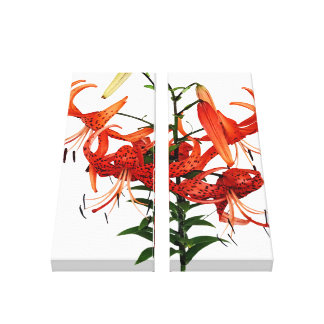 Tiger Lilies Gallery Wrapped Canvas